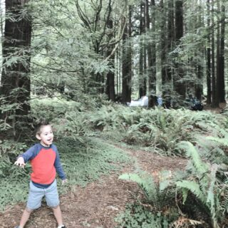 Summer has started for the kids and I'm reflecting on the awesome three week road trip fox and I did back in 2018. This is from the redwood forest.   What's a cool place you've been to/where you want to go this summer?   #summertrips #redwoodforest #closertonature #boymom #singlemomadventures #californiaadventure